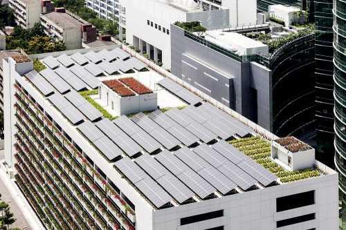 Австралийская блокчейн-компания испытала «зелёную» пиринговую электросеть