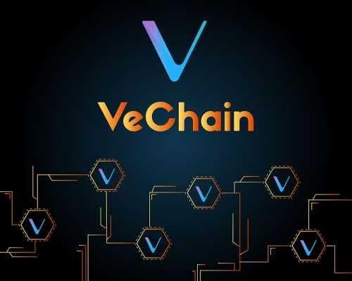 VeChain готовится сделать снимок блокчейна для назначения операторов X-нод