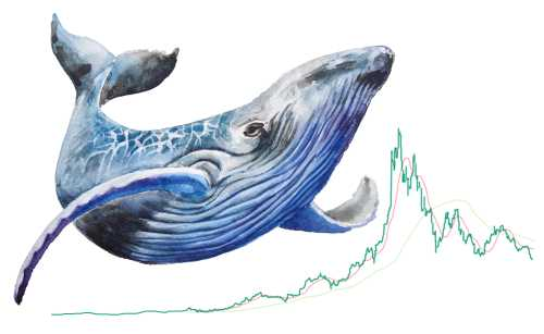 Крипто-киты нарастили свои активы в Ethereum на 80% с начала года