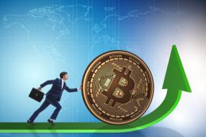 Аналитики: Последний шанс купить биткоин около $10000 перед подъёмом к $100000