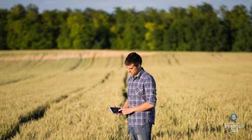 Первая сделка в сельскохозяйственном секторе с использованием технологии Blockchain успешно завершена