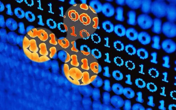 Ещё больше хардфорков: Bitcoin God активирован, на подходе «новый» SegWit2x