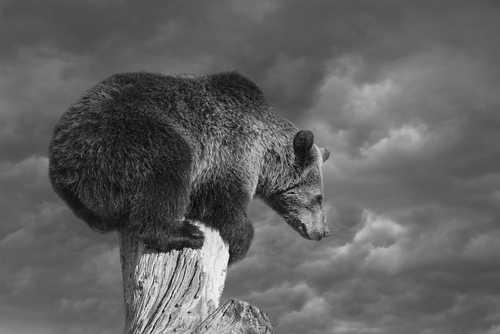 Аналитик: Капитуляция Ethereum может означать окончание медвежьего цикла биткоина