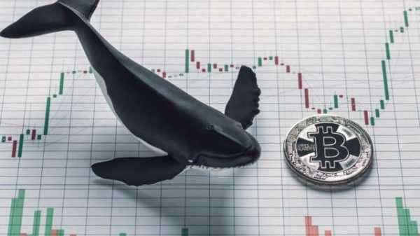 «Киты» переводят биткоины на биржи