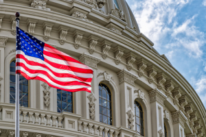 В США предложили запретить технологическим гигантам выпускать цифровые активы