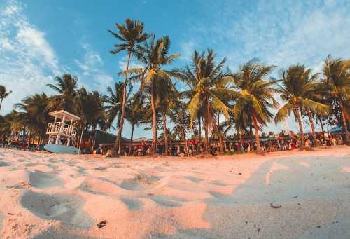 Жители Филиппин получат вознаграждение в Ethereum за очистку загрязнённого пляжа Манилы