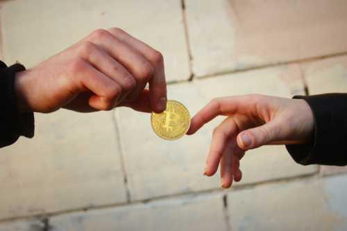 Openbazaar добавил возможность торговли 1 500 криптовалютами без комиссий и верификации