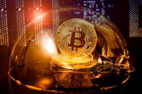 Майк Новограц: Мы держались очень хорошо, когда биткоин упал на первые 60%