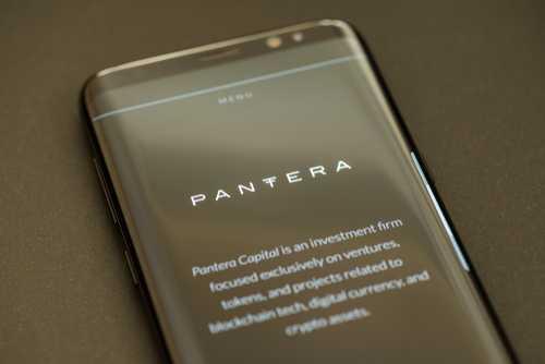 Инвестдиректор Pantera Capital: На следующем подъёме капитализация крипто-рынка вырастет в 10 раз