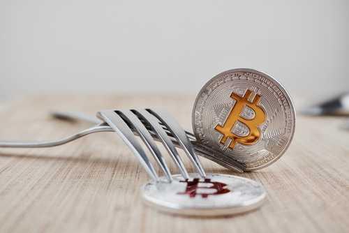 BitMEX создала инструмент для мониторинга форков в блокчейнах биткоина и Bitcoin Cash