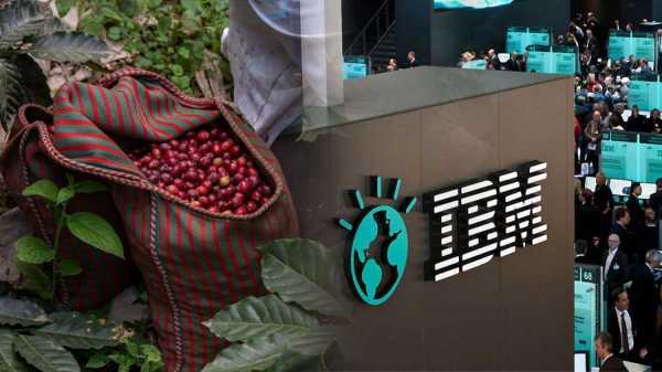 IBM и Farmer Connect запустят приложение на блокчейне для отслеживания поставок кофе
