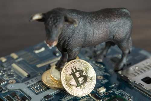 Аноним поставил 8,5 млн австралийских долларов на то, что биткоин обгонит акции Berkshire Hathaway