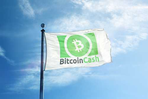 Крейг Райт призывает майнеров Bitcoin Cash отказаться от комиссий за транзакции