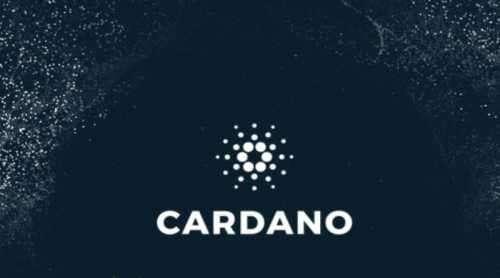 Блокчейн Cardano (ADA) дает инвесторам больше возможностей | Freedman Club Crypto News