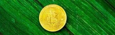 Несколько долгосрочных технических индикаторов на рынке биткоина указывают на покупку