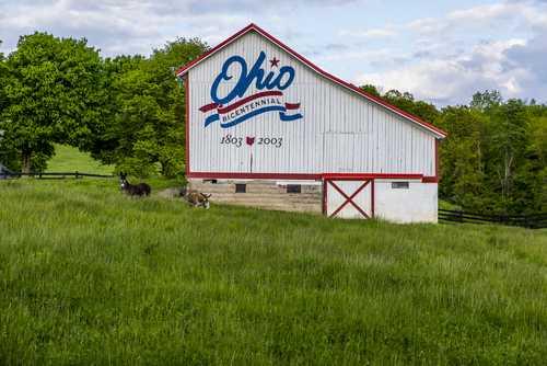 В Огайо разрешат оплачивать налоги биткоинами