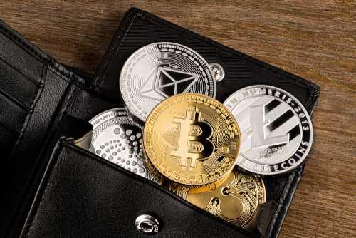 Майк Новогратц: курсы криптовалют достигли дна, впереди взрывной рост