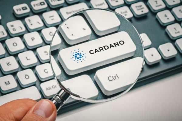 Пользователи заинтересовались Cardano