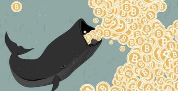 Неизвестный «биткоин-кит» перевёл 11 230 BTC на сумму $ 116 млн
