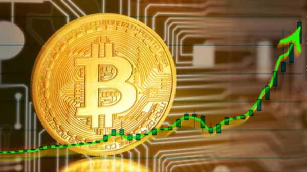 Опрос: В биткоин по $20 000 в 2020 году верит только 47% респондентов