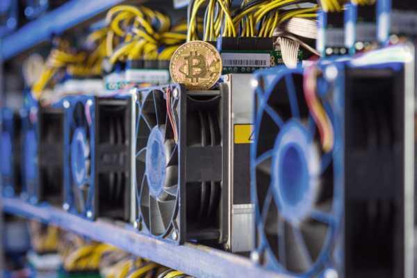 BitMEX: После халвинга хешрейт биткоина упадет на 30%