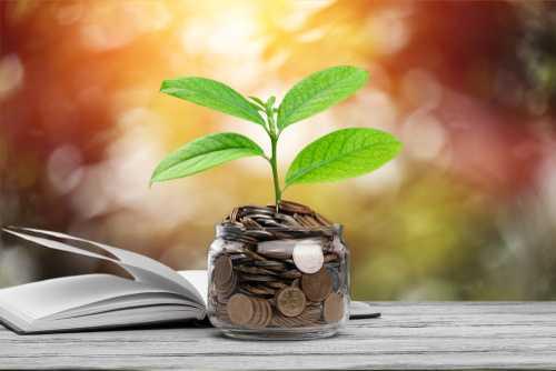 Мотивационная биткоин-платформа Lolli привлекла $2,25 млн при участии Bain Capital