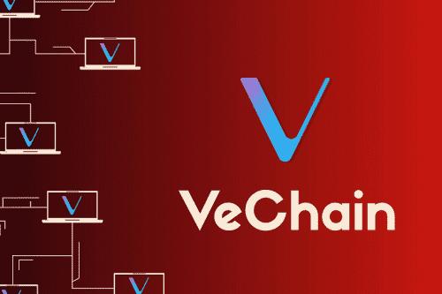 Тим Дрейпер инвестирует в криптовалютный стартап VeChain