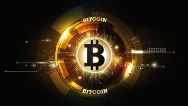 Аналитики Chainalysis сообщили о рекордном росте новых инвестиционных биткоин-адресов