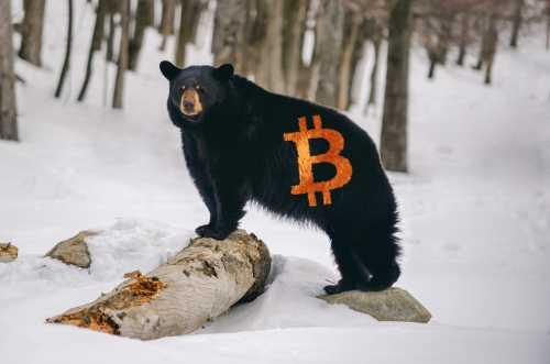 CEO BitMEX о курсе биткоина: Я бы хотел, чтобы мы протестировали $5 000