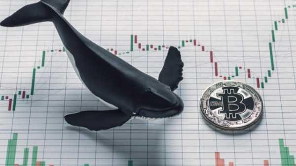 Криптобиржи в мае установили новый рекорд по объему торгов