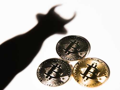 Майк Новограц: Следующая остановка для биткоина $10 000, а затем сразу $20 000