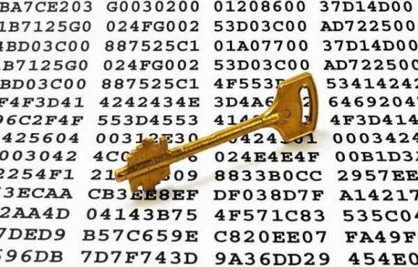 Исследователи рассказали, как воруют криптовалюту с кошельков бирж