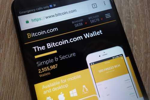 Роджер Вер намекнул на возможное ICO для портала Bitcoin.com